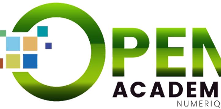 Open Academy: L'école numérique malienne ouvre ses portes