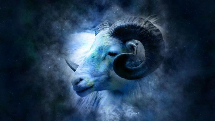TABASKI : moins d'un mois, le prix du mouton prend l'ascenseur
